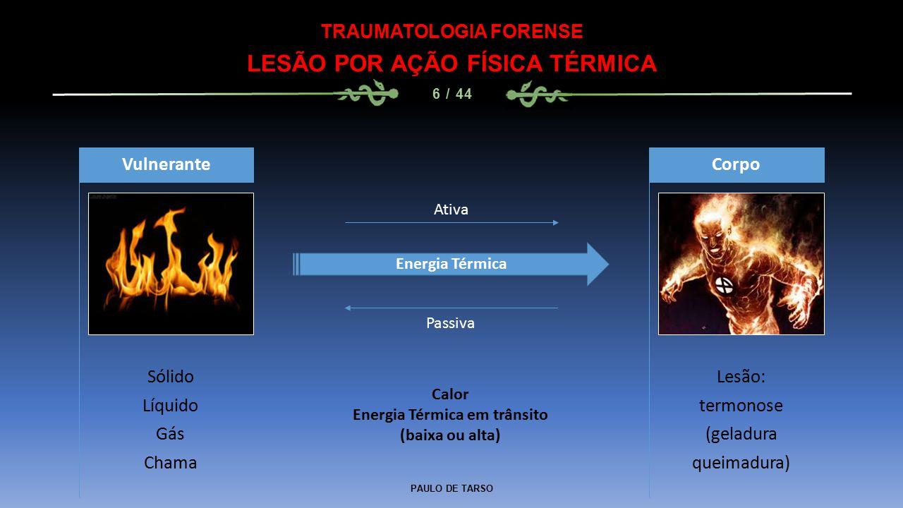 LESÃO POR AÇÃO FÍSICA TÉRMICA