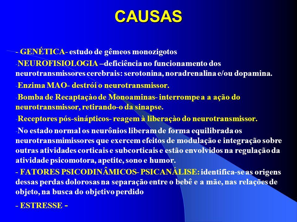 CAUSAS - GENÉTICA- estudo de gêmeos monozigotos