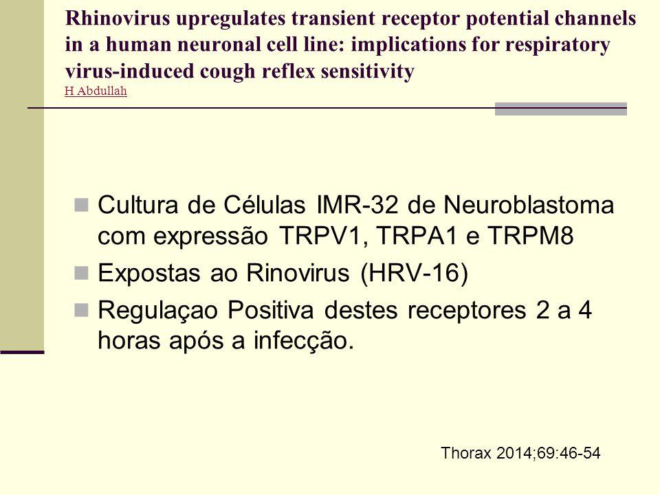 Expostas ao Rinovirus (HRV-16)