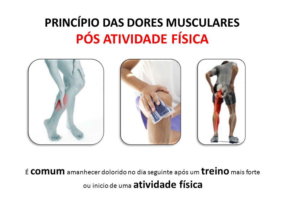 PRINCÍPIO DAS DORES MUSCULARES