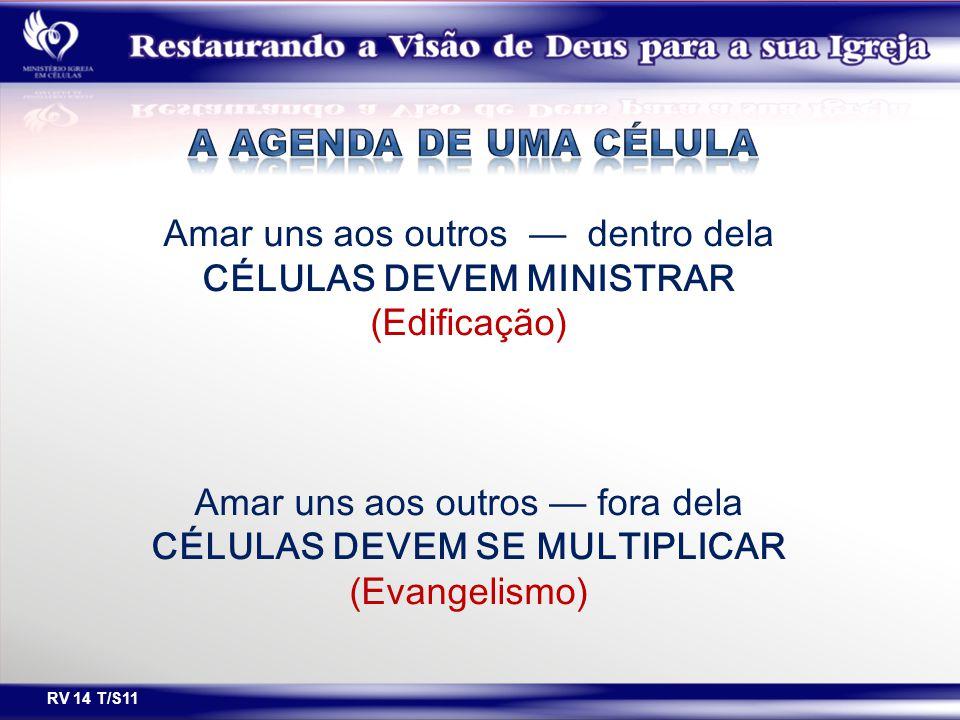 CÉLULAS DEVEM MINISTRAR CÉLULAS DEVEM SE MULTIPLICAR