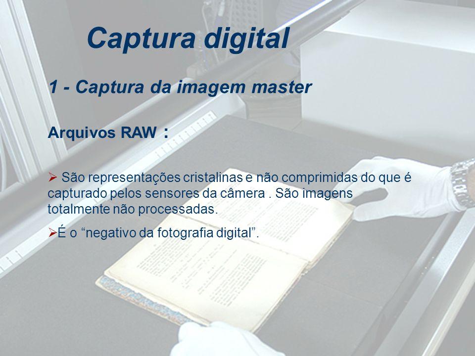 Captura digital 1 - Captura da imagem master Arquivos RAW :