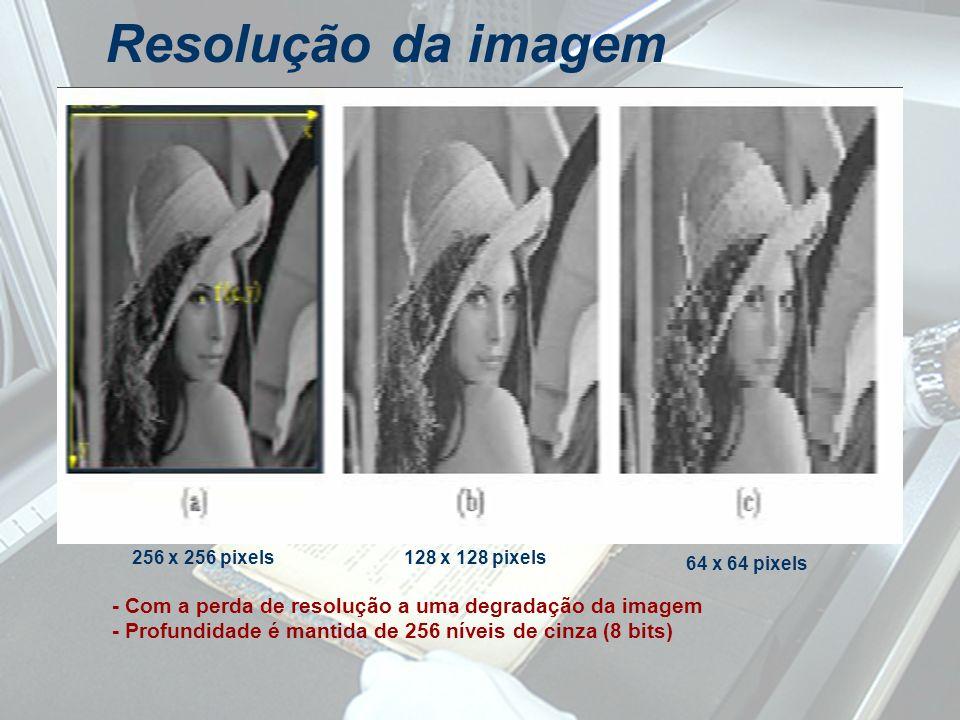 Resolução da imagem 256 x 256 pixels. 128 x 128 pixels. 64 x 64 pixels. - Com a perda de resolução a uma degradação da imagem.