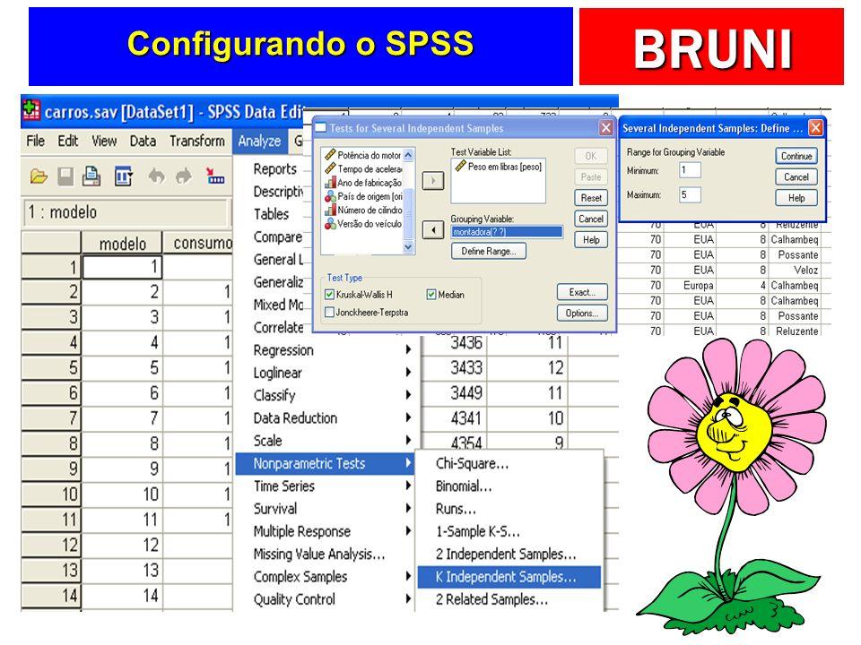 Configurando o SPSS