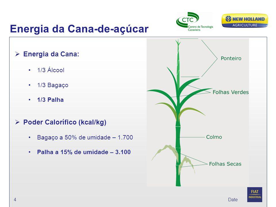 Energia da Cana-de-açúcar