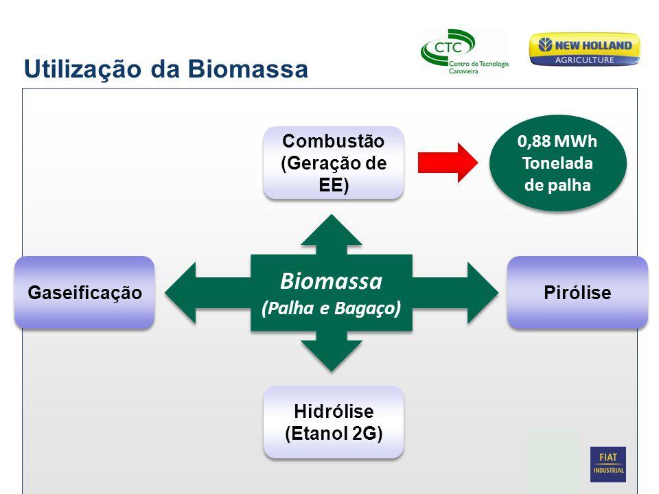Utilização da Biomassa