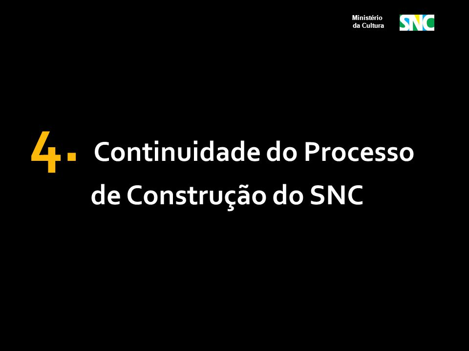 4. Continuidade do Processo de Construção do SNC