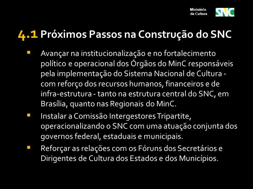 4.1 Próximos Passos na Construção do SNC