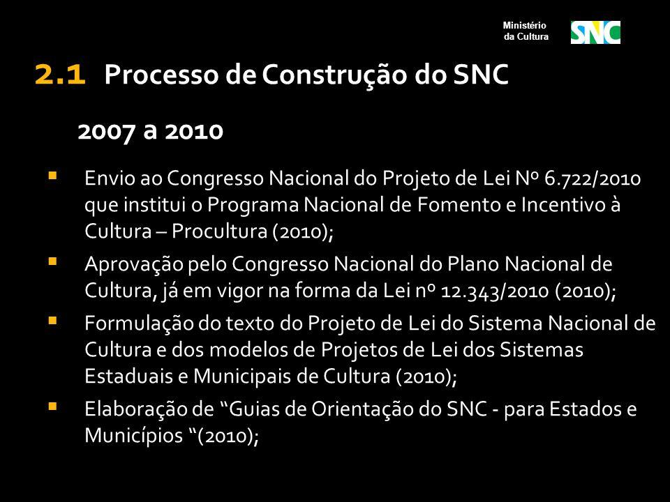 2.1 Processo de Construção do SNC