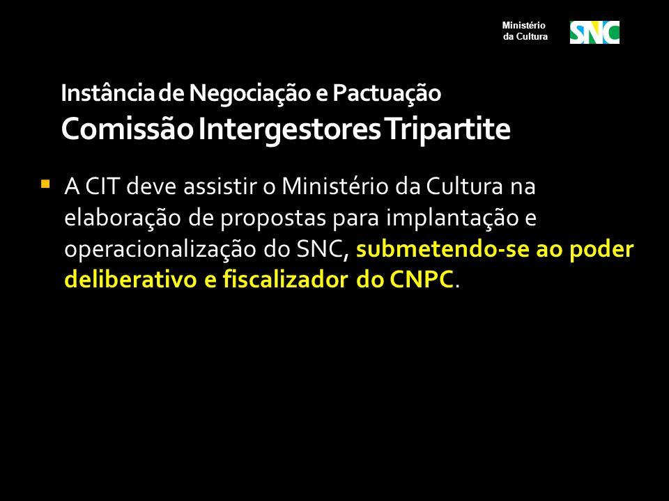 Instância de Negociação e Pactuação Comissão Intergestores Tripartite