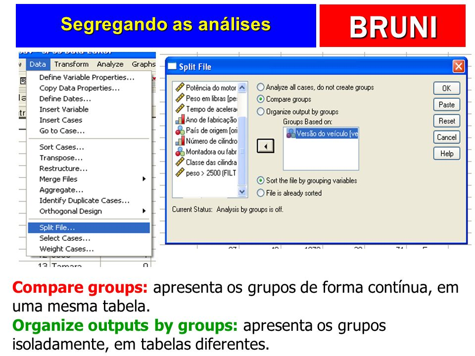 Segregando as análises