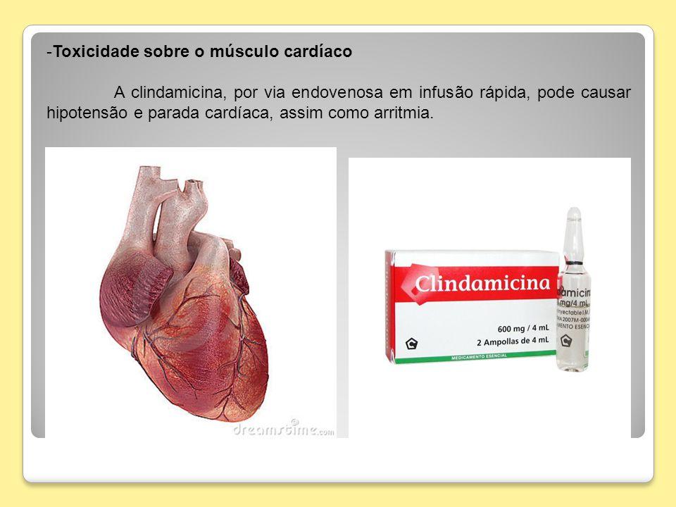 Toxicidade sobre o músculo cardíaco