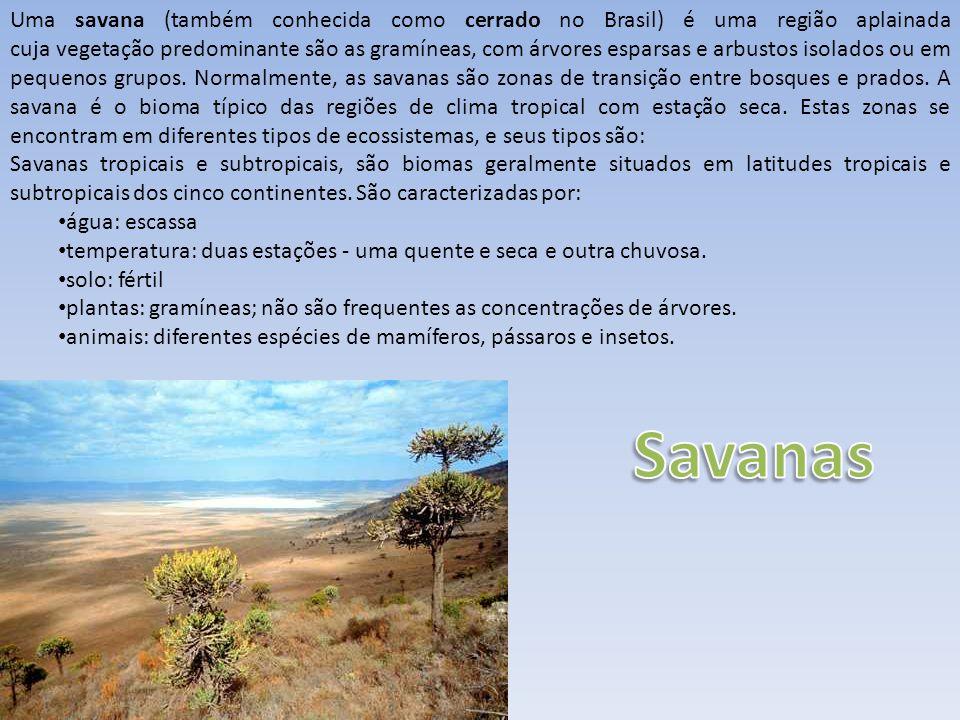 Uma savana (também conhecida como cerrado no Brasil) é uma região aplainada cuja vegetação predominante são as gramíneas, com árvores esparsas e arbustos isolados ou em pequenos grupos. Normalmente, as savanas são zonas de transição entre bosques e prados. A savana é o bioma típico das regiões de clima tropical com estação seca. Estas zonas se encontram em diferentes tipos de ecossistemas, e seus tipos são:
