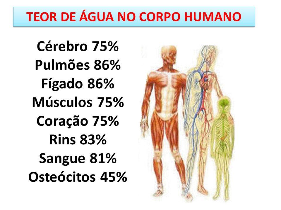 TEOR DE ÁGUA NO CORPO HUMANO
