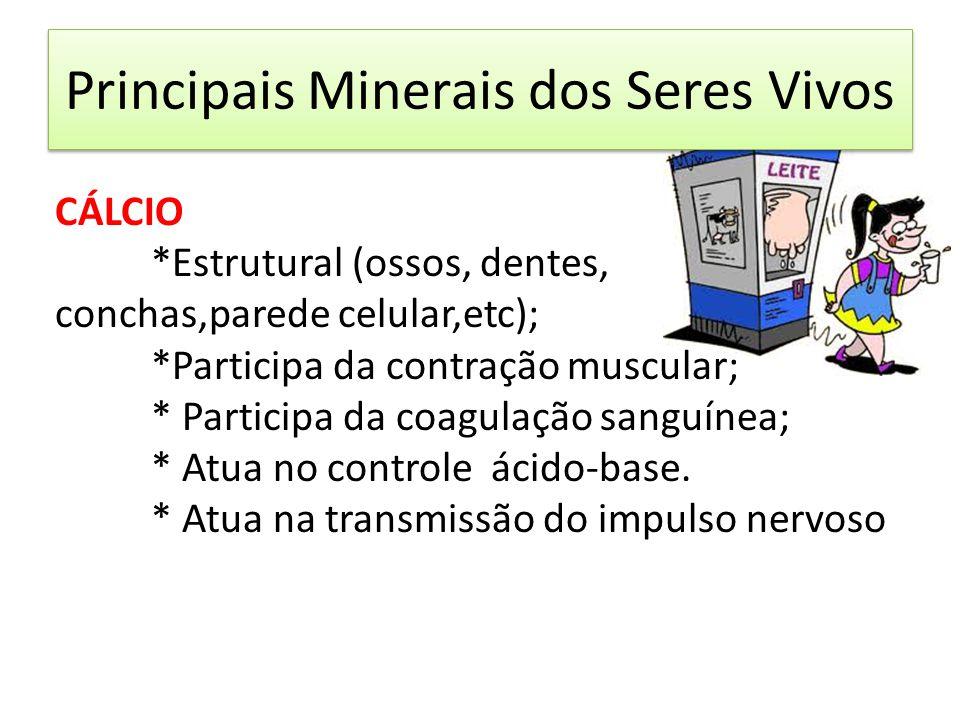 Principais Minerais dos Seres Vivos