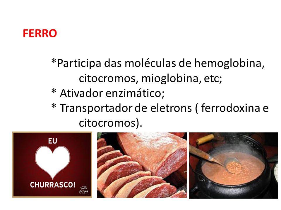 FERRO *Participa das moléculas de hemoglobina, citocromos, mioglobina, etc; * Ativador enzimático;