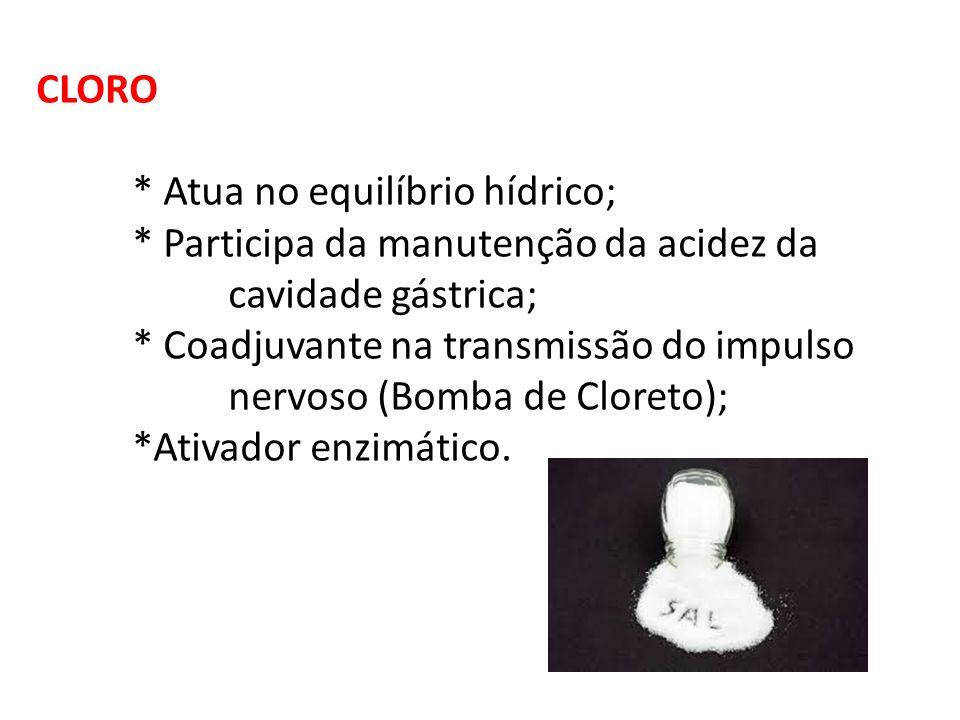 CLORO * Atua no equilíbrio hídrico; * Participa da manutenção da acidez da. cavidade gástrica; * Coadjuvante na transmissão do impulso.