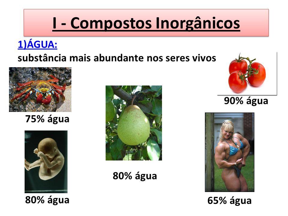 I - Compostos Inorgânicos