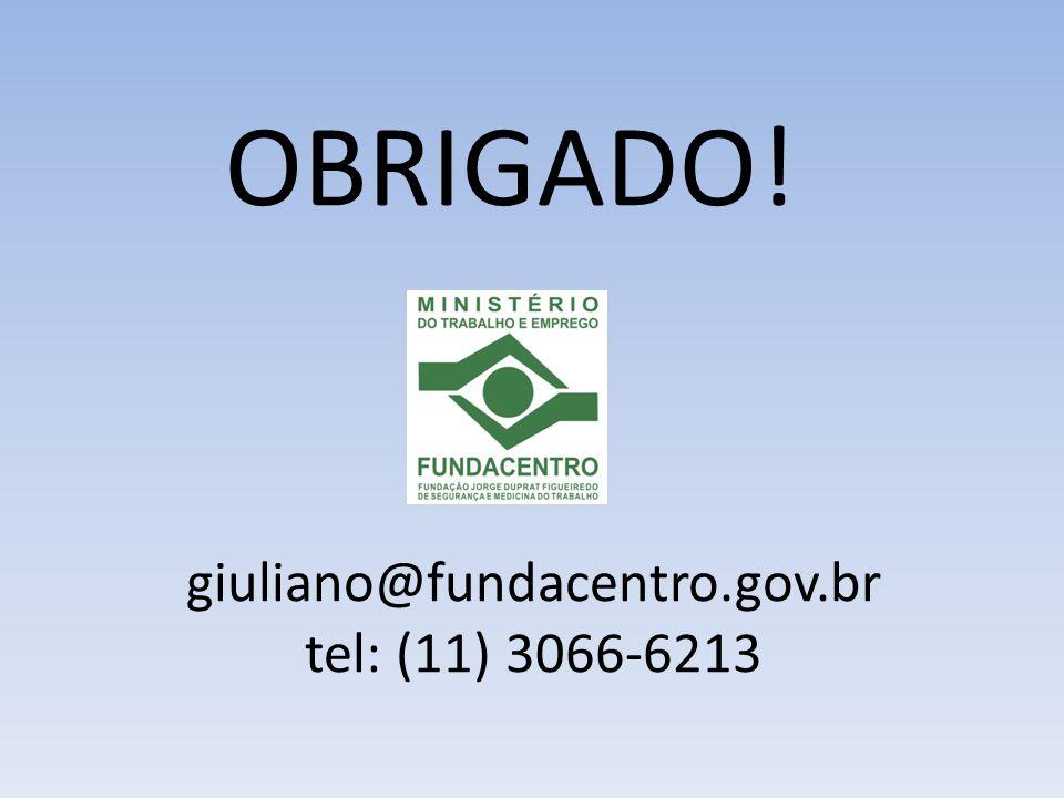 giuliano@fundacentro.gov.br tel: (11) 3066-6213