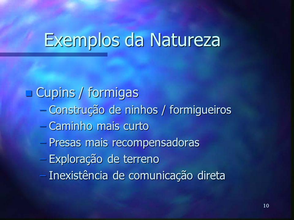 Exemplos da Natureza Cupins / formigas
