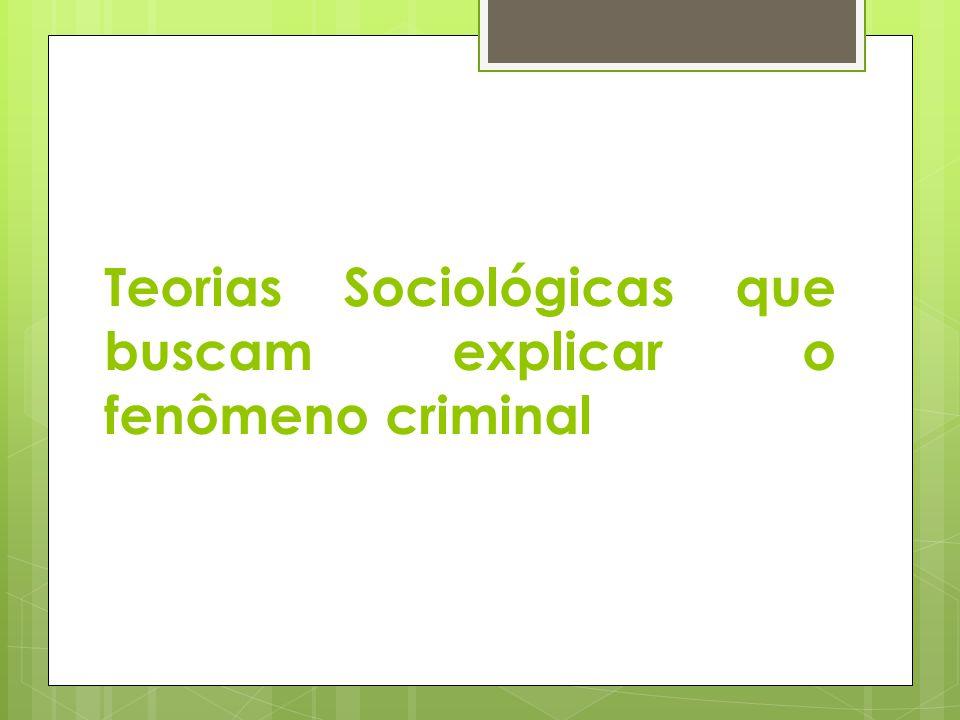 Teorias Sociológicas que buscam explicar o fenômeno criminal