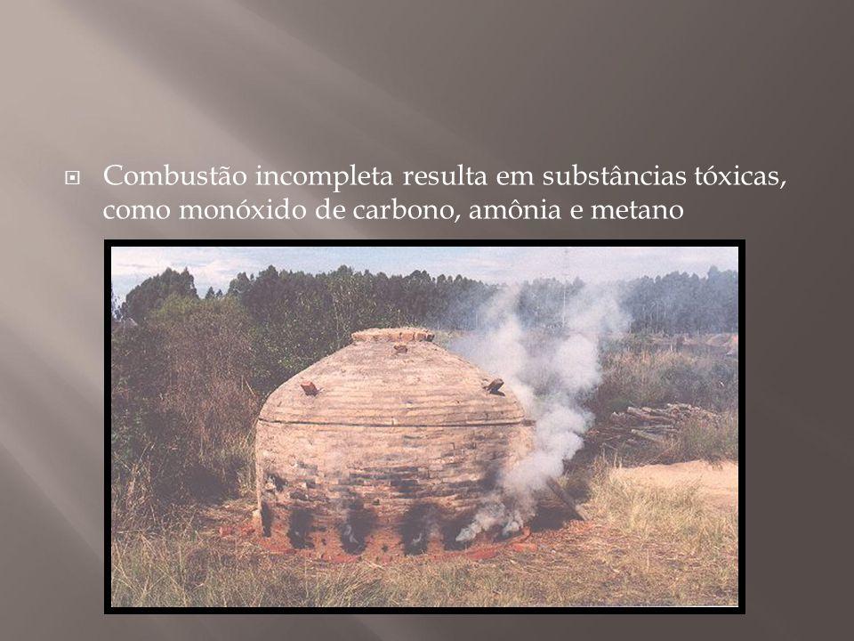 Combustão incompleta resulta em substâncias tóxicas, como monóxido de carbono, amônia e metano