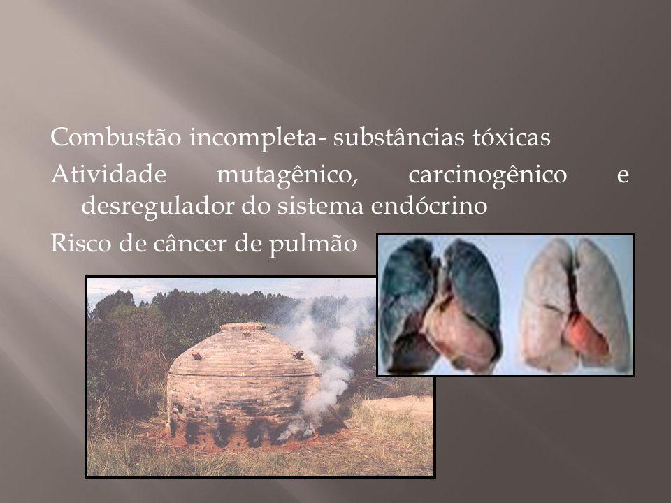 Combustão incompleta- substâncias tóxicas Atividade mutagênico, carcinogênico e desregulador do sistema endócrino Risco de câncer de pulmão