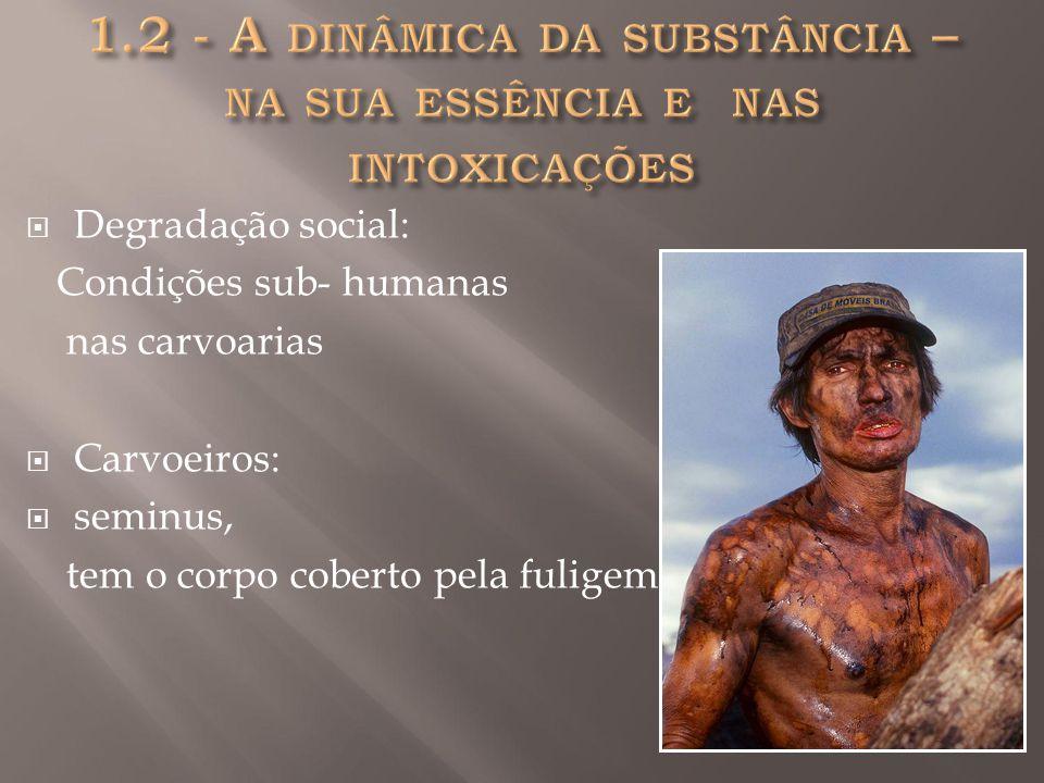 1.2 - A dinâmica da substância – na sua essência e nas intoxicações