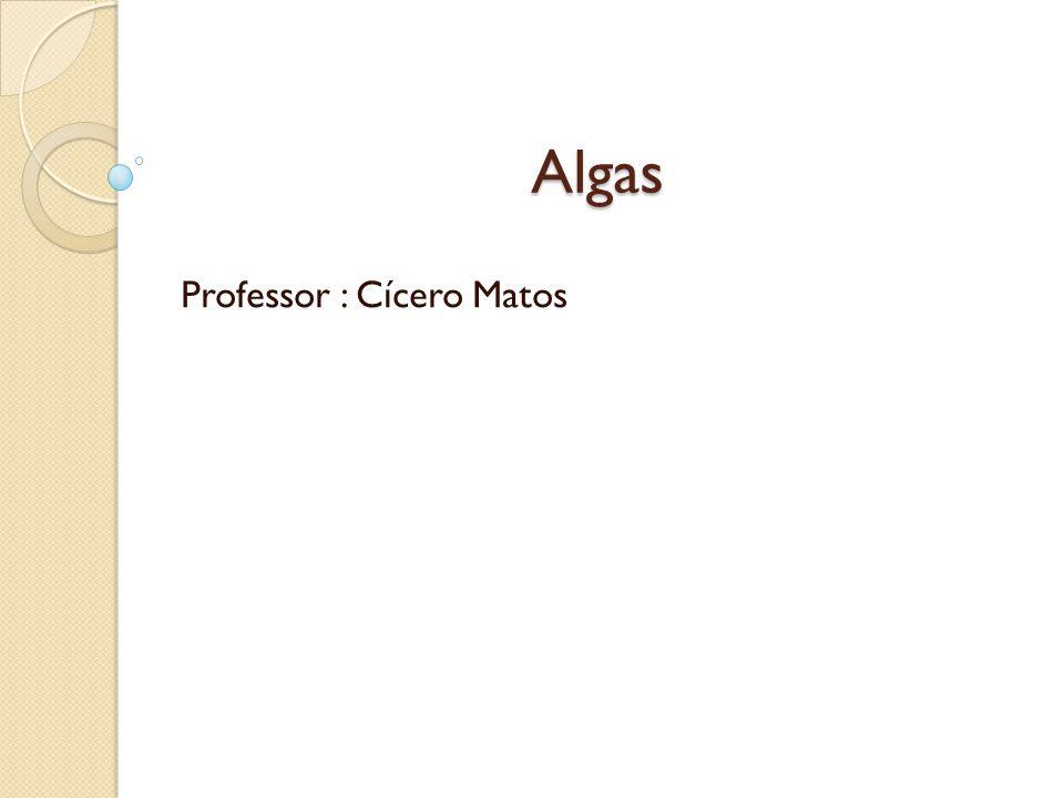 Professor : Cícero Matos