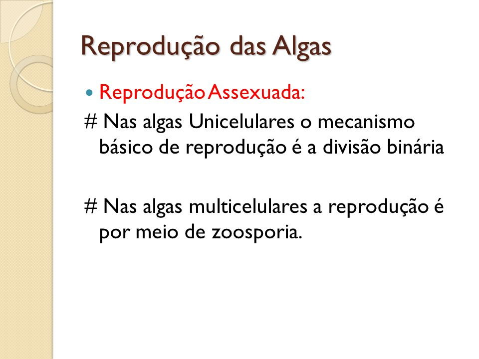 Reprodução das Algas Reprodução Assexuada: