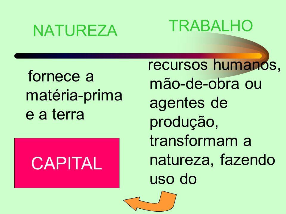 CAPITAL TRABALHO NATUREZA