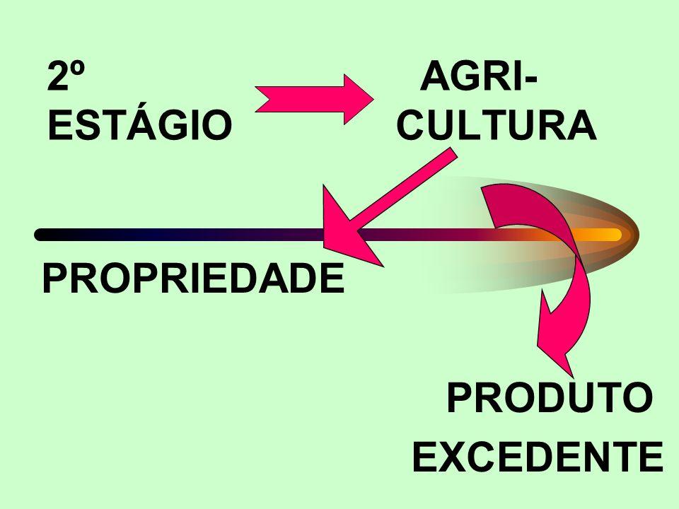 2º AGRI- ESTÁGIO CULTURA