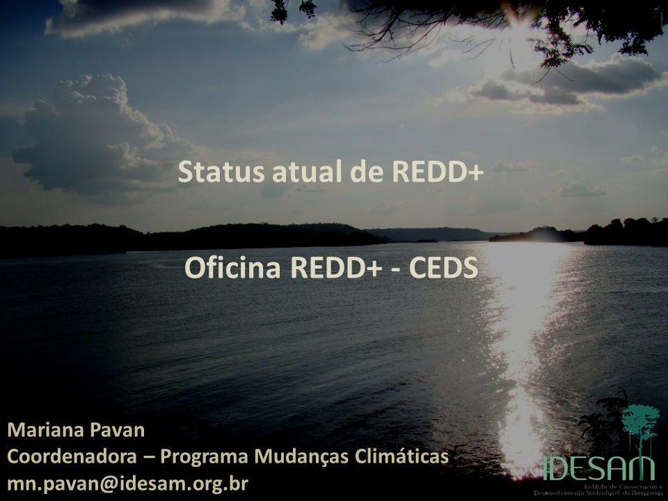 Status atual de REDD+ Oficina REDD+ - CEDS