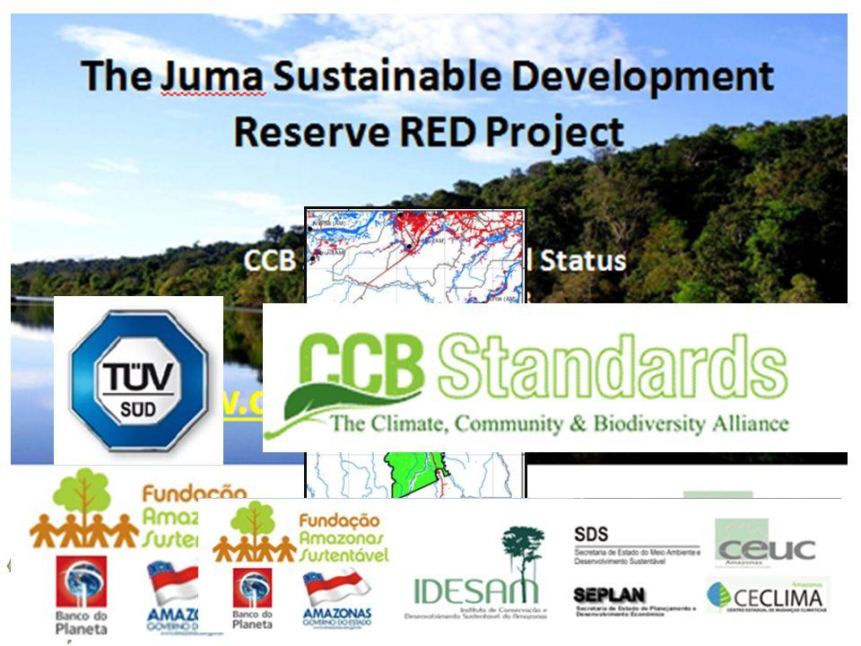 Projeto de RED da RDS do Juma