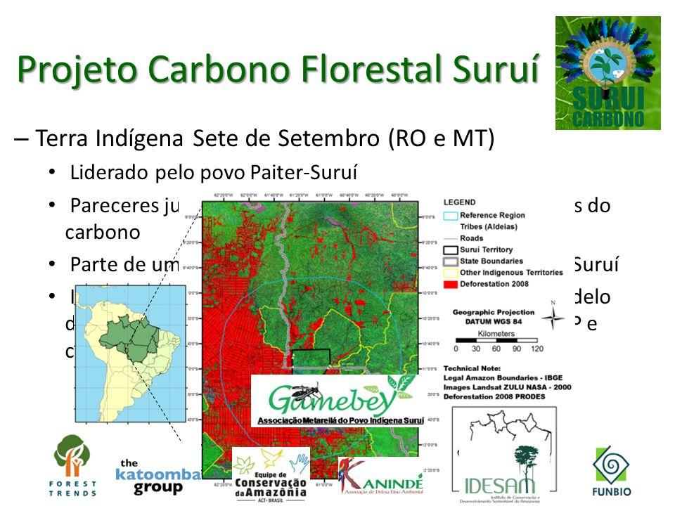 Projeto Carbono Florestal Suruí