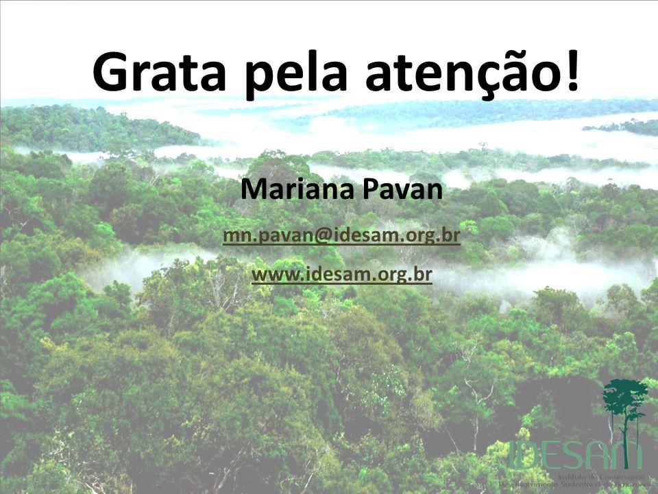 Grata pela atenção! Mariana Pavan mn.pavan@idesam.org.br