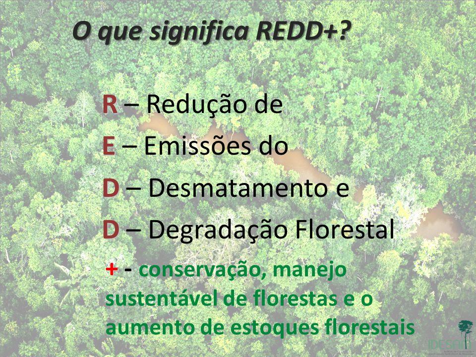 D – Degradação Florestal