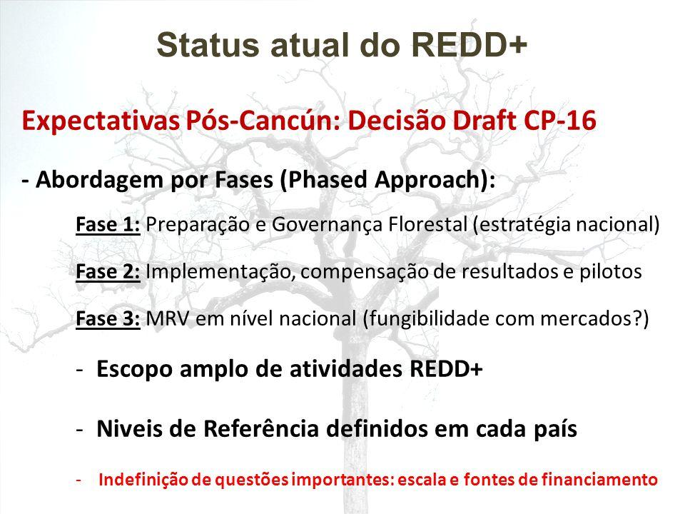 Status atual do REDD+ Expectativas Pós-Cancún: Decisão Draft CP-16