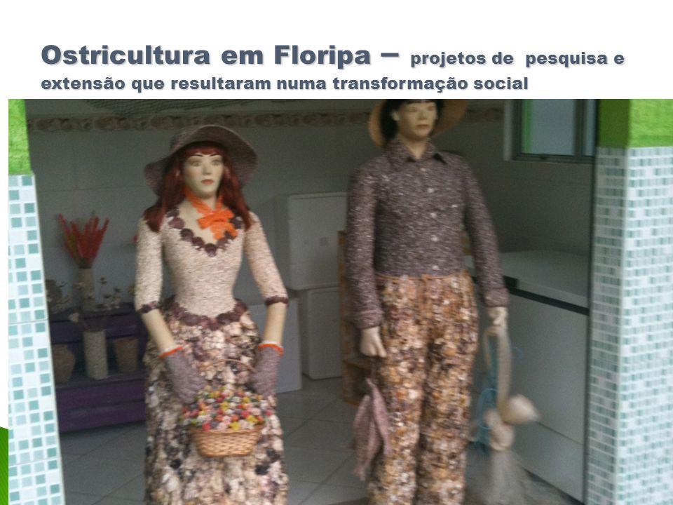 Ostricultura em Floripa – projetos de pesquisa e extensão que resultaram numa transformação social