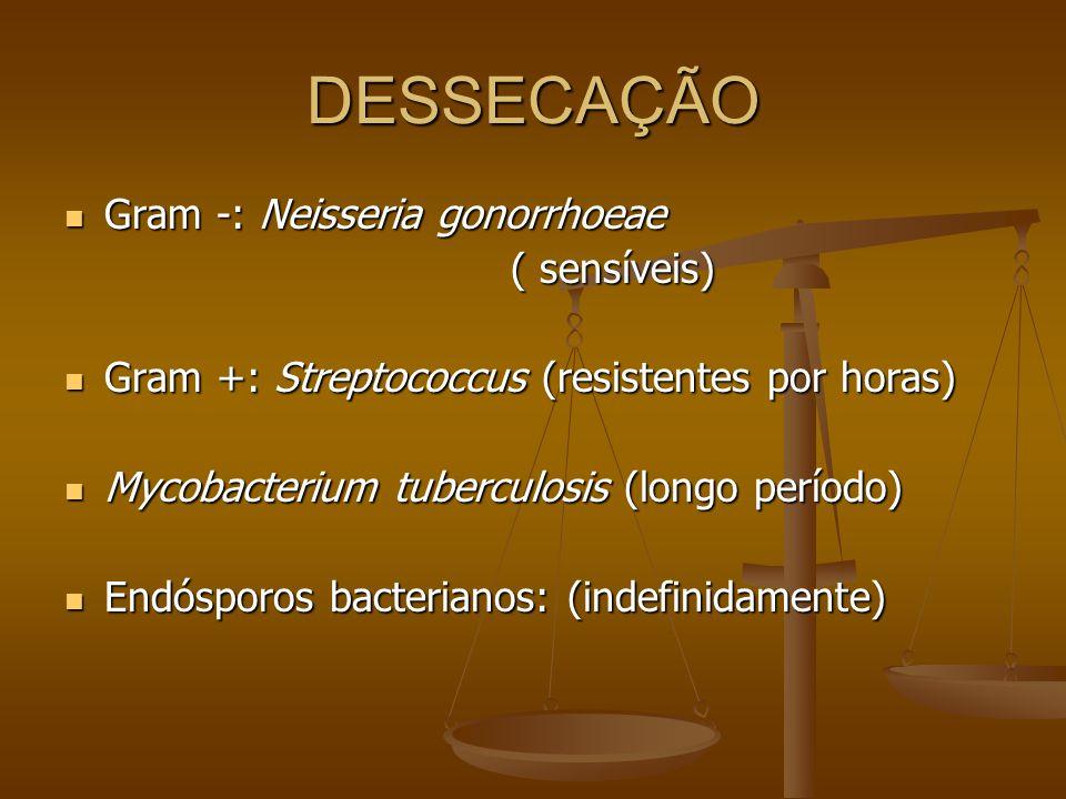 DESSECAÇÃO Gram -: Neisseria gonorrhoeae ( sensíveis)