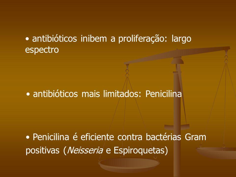 antibióticos inibem a proliferação: largo espectro