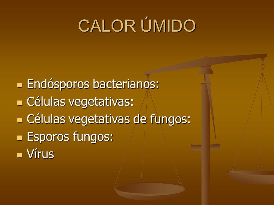 CALOR ÚMIDO Endósporos bacterianos: Células vegetativas: