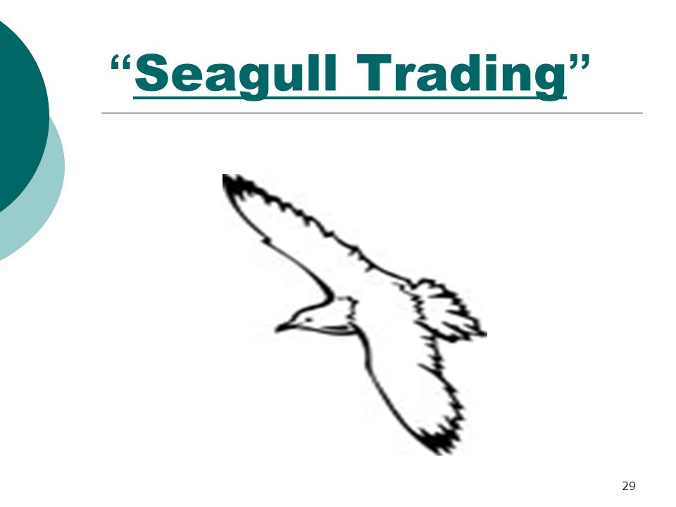 Seagull Trading