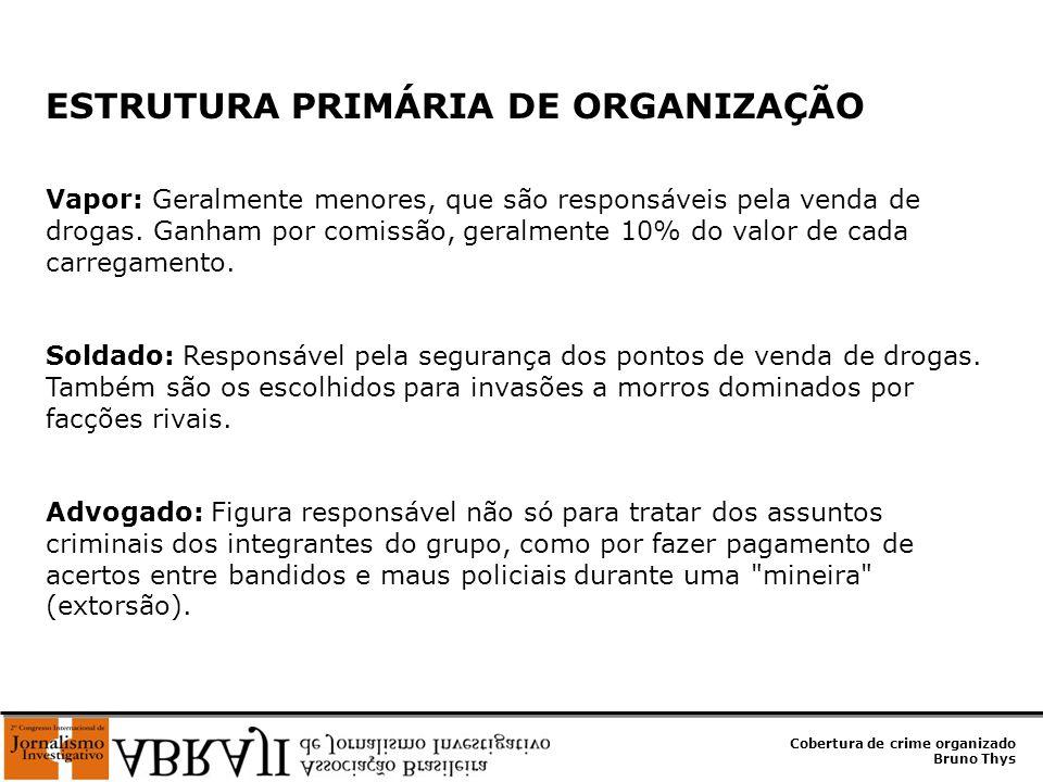 ESTRUTURA PRIMÁRIA DE ORGANIZAÇÃO
