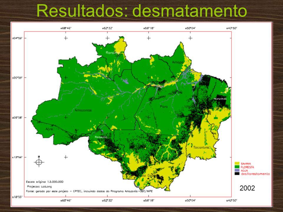 Resultados: desmatamento