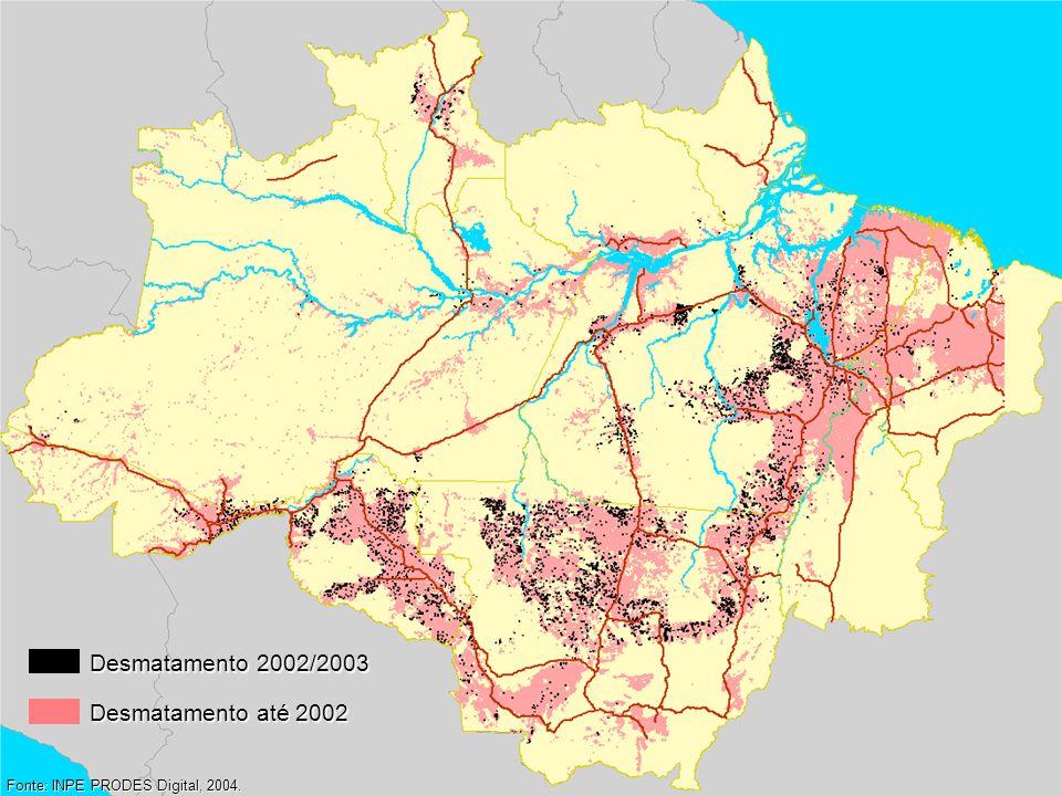 Desmatamento 2002/2003 Desmatamento até 2002