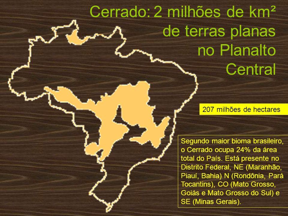 Cerrado: 2 milhões de km² de terras planas no Planalto Central