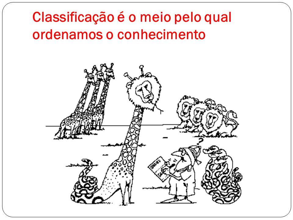 Classificação é o meio pelo qual ordenamos o conhecimento