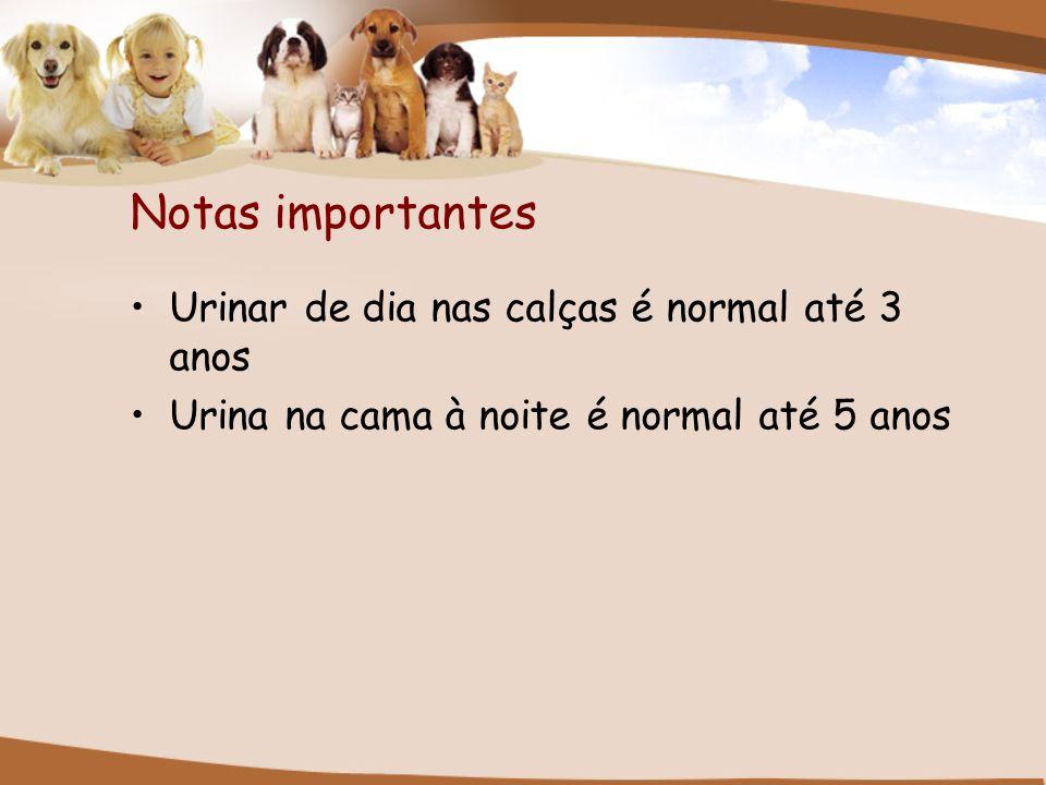 Notas importantes Urinar de dia nas calças é normal até 3 anos