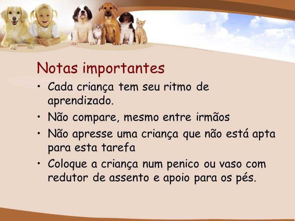 Notas importantes Cada criança tem seu ritmo de aprendizado.